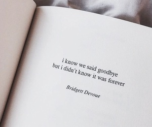 quotes, goodbye, and book image