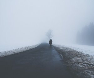alone, winter, and fog image