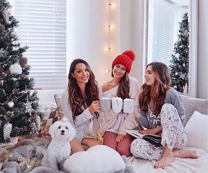 christmas, friends, and girl image