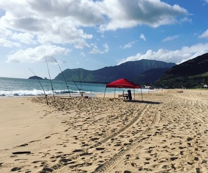 beach, Dream, and hawaii image