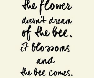 quotes, flowers, and bee image