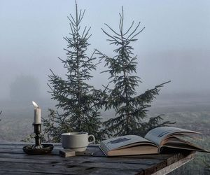 book, candle, and forest image