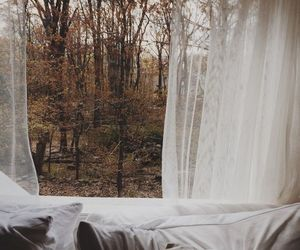 autumn, cold, and window image
