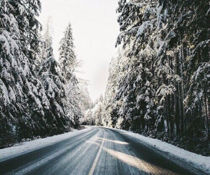 christmas, december, and road image