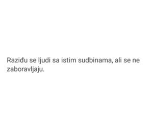 balkan, ljudi, and najljepsi citati image