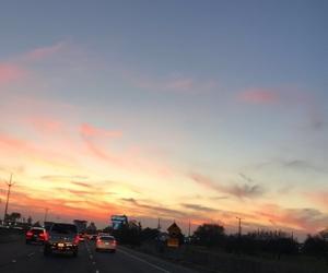 palmtree, sunrise, and love image