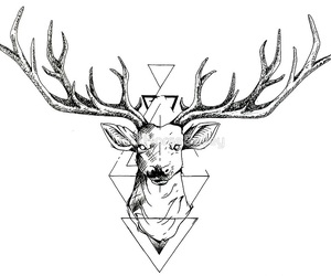 deer, drawing, and tattoo image