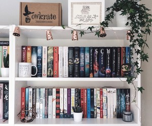 book and bookshelf image