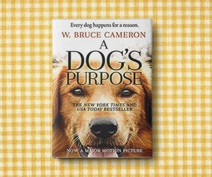 animals, book, and puppy love image