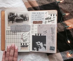 pic and bullet journal image