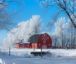 barn, winter, and country living image