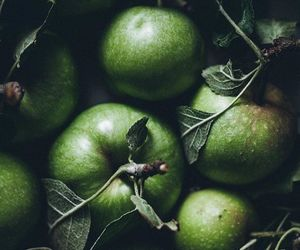apple, fruit, and green image