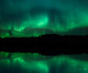 auroras, green, and sky image