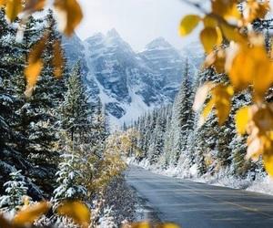 christmas, winter, and yellow image