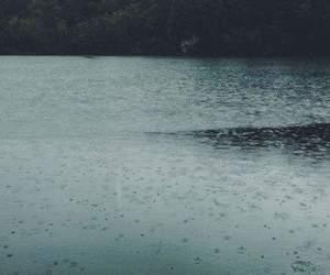 rain, nature, and lake image