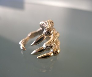 ring, claws, and fashion image