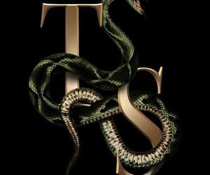 Taylor Swift, Reputation, and snake image