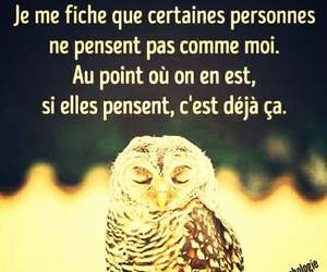 chouette, hibou, and personnes image