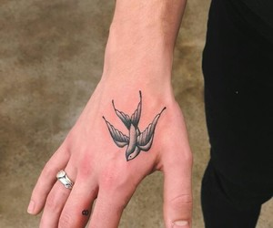 tattoo, shawn mendes, and bird image