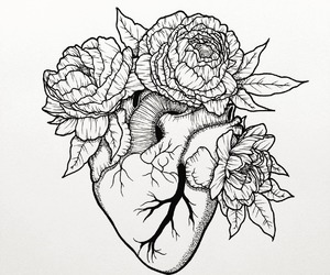 anatomical heart, artist, and artwork image