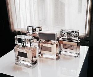 perfume and luxury image