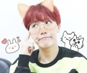 kpop, jung hoseok, and kawaii icons image