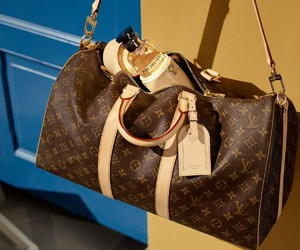fashion, inspiration, and bag louis vuitton image