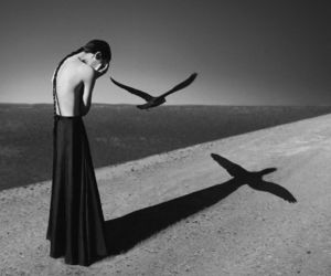 photography, art, and noell oszvald image