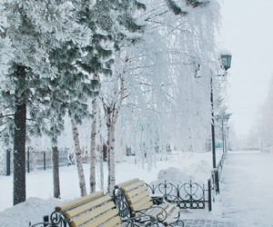 cold, snow, and street image