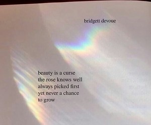 quotes, beauty, and book image