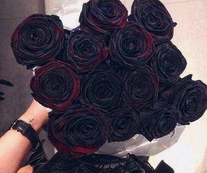 rose, black, and beautiful image
