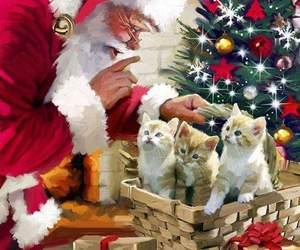 christmas, invierno, and merry christmas image