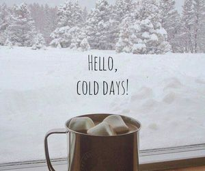 christmas, cold days, and gray image