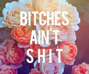 bitch, roses, and shit image