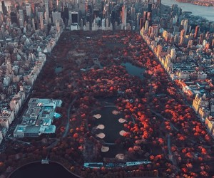 landscape, manhattan, and photography image