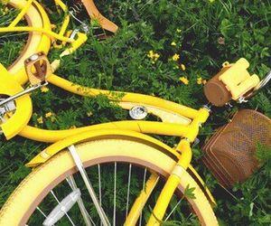 yellow, aesthetic, and bike image