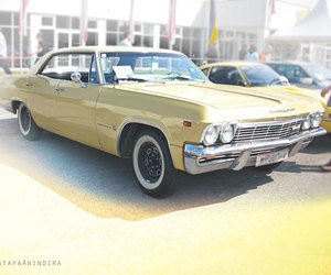 cars, yellow, and yellow theme image