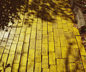 photography and yellow image