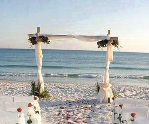 beach, wedding, and rose image