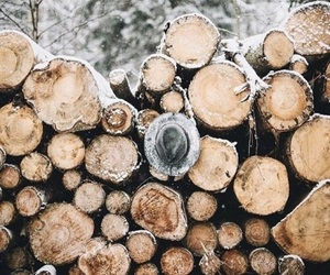 snow, winter, and wood image