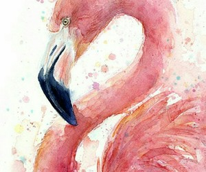 animal, art, and flamingo image