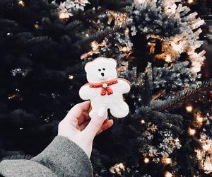 christmas, winter, and bear image