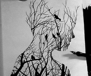 drawing, art, and birds image