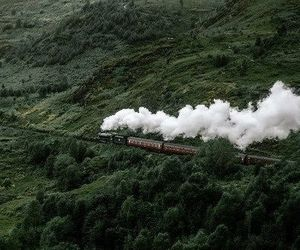 train, green, and nature image