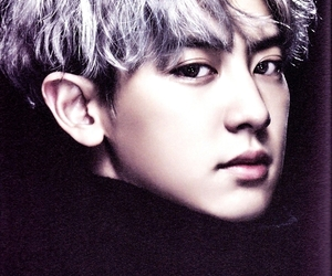exo, park, and chanyeol image
