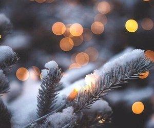 christmas, christmas tree, and snowstorm image