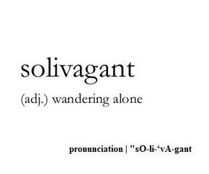alone, solivagant, and wander image