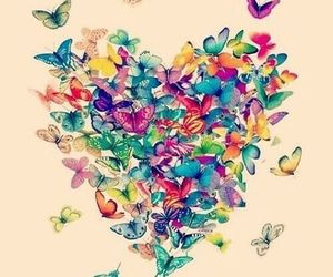 butterfly, heart, and colors image
