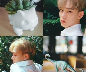 aesthetic, Chen, and d.o image