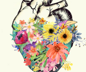 draw, flower, and heart image